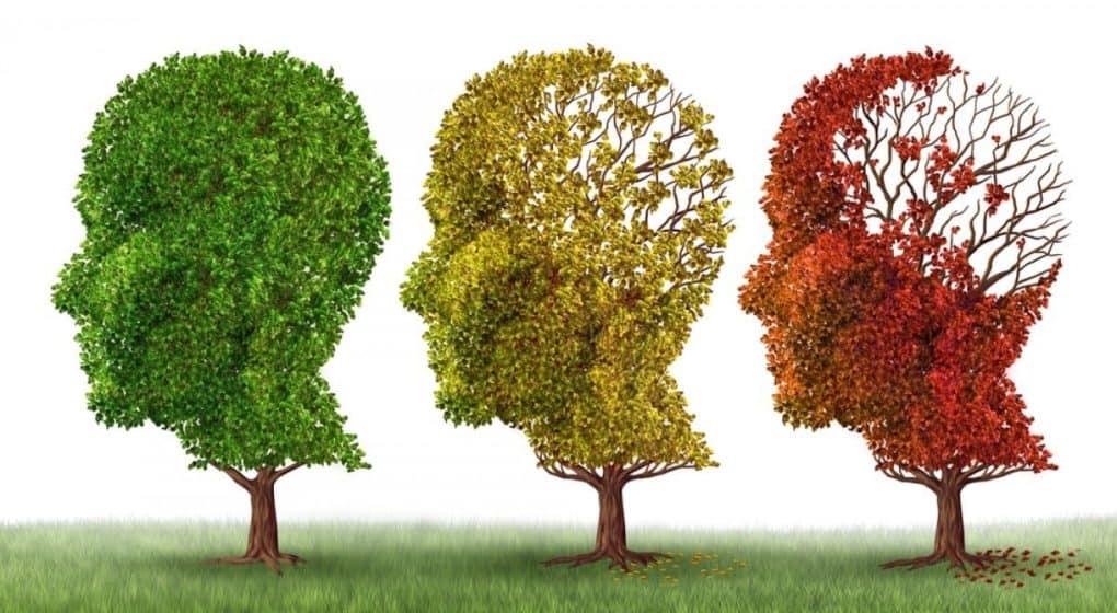 VR och Alzheimers